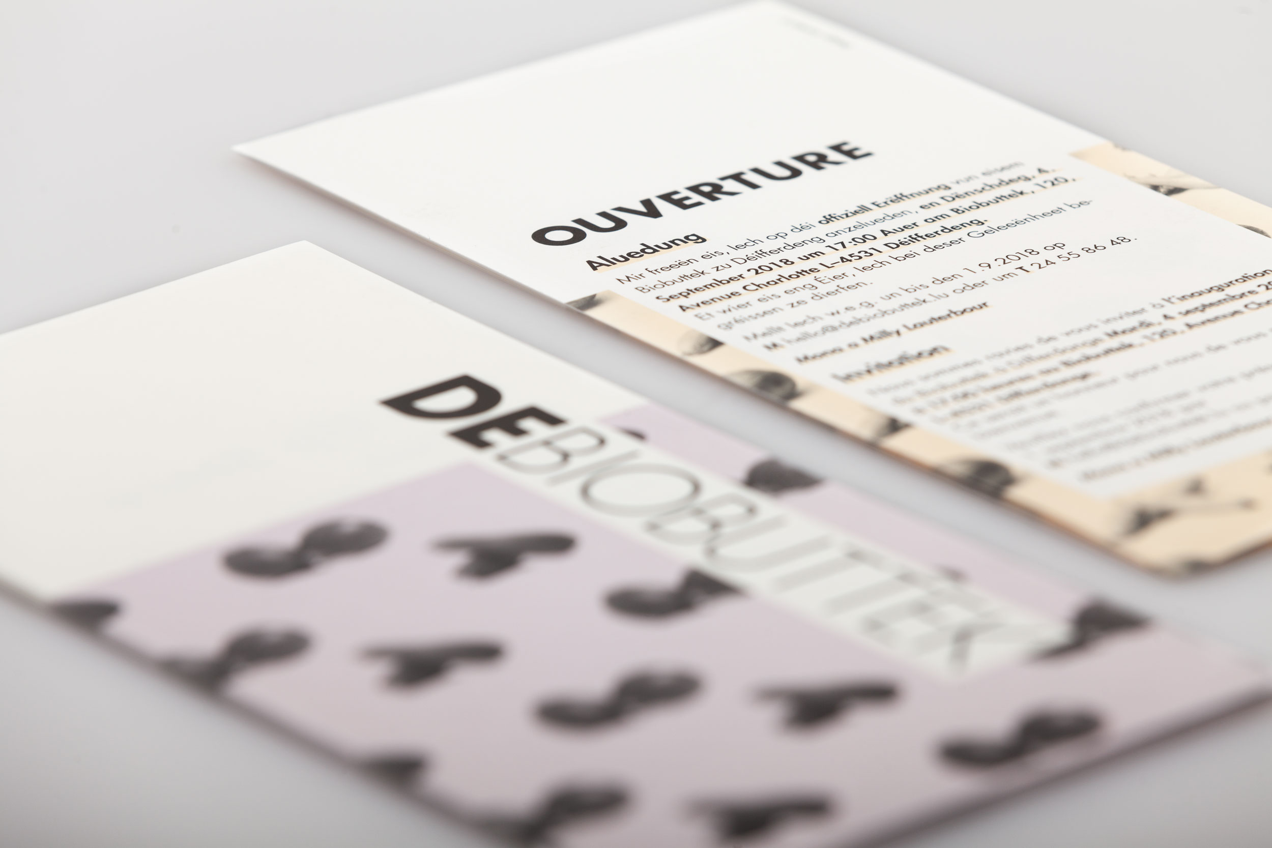 DeBiobuttek Flyer